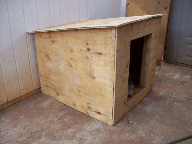 One Sheet 4 X 8 Plywood Dog House Resha Sled Dog